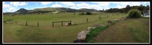 Horse agistment Yandina Creek Noosa Area Preview