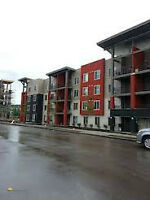 1 Bedroom, 1 Bath, In-Suite Laundry Airdrie for August 1st