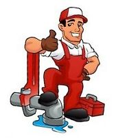 Your Friendly Neighbourhood Plumber!
