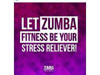 ZUMBA Fitness Class Brown Edge