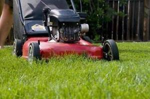 Oakleigh South Lawn mowing Oakleigh South Monash Area Preview