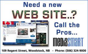Professional Web Site Design & Development   -  Woodstock Area
