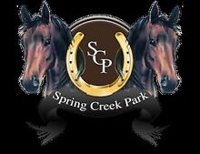 Spring Creek Park Agistment Mount Hunter Wollondilly Area Preview