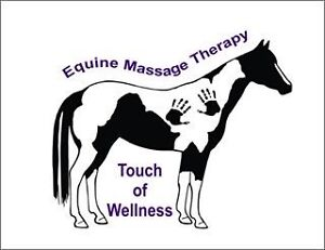 Touch of wellness equine therapy