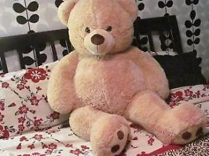 PPU FREE Giant teddy bear from smoke free and pet free home