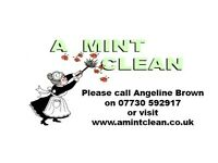 part time cleaner to work for A Mint Clean ltd