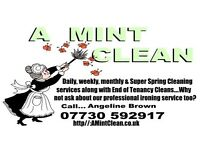 Professional, affordable and friendly domestic cleaning service in Whitley Bay and surrounding areas