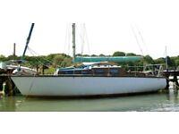 Sail boat for sale (strip plank mahogany.)