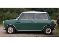 CLASSIC MINIS WANTED AUSTIN MORRIS ROVER MINI ** ALL CONSIDERED FROM RESTORED TO GARAGE FIND **