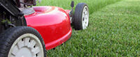 Lawn maintenance and Grass cutting services