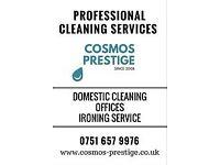 Proffessional Cleaning Service