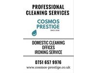 Office, Domestic, Ironing ... Cleaning Service