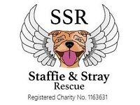 Charity shop volunteers wanted