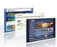 Affordable Web Site Design with professional view