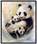 Pandas Creations