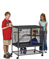Critter Nation Cage and Two Female Rats