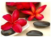 Chinese Relaxing Full Body massage