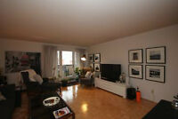 Gorgeous Renovated 1 Bdm PLUS LARGE DEN Apt in Prime Location