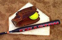 Softball Player Looking to Join Team - Summer/Fall