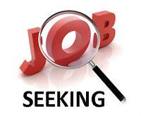 Seeking for a cook job, kitchen helper or something else