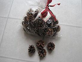 Christmassy Cinnamon fragranced pine cones