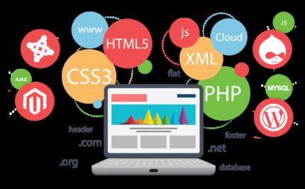 Aleph IT - Web Application Developers