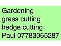 Gardening grass cutting hedge cutting and small electrical jobs