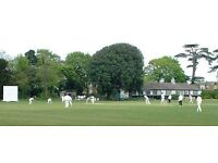 HOUNSLOW based Chiswick & Whitton CC are recruiting now for 2017