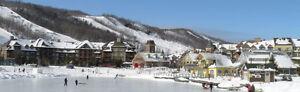 Cozy Condo - Walk to Village - Ski Season
