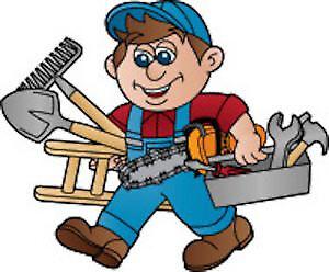 handy man/electrician/painter/odd jobs