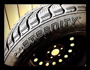 205/55R16 Eternity Winter Warrior winter tires on steel rims