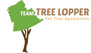 Team  Tree Lopper Pty Ltd Shenton Park Nedlands Area Preview