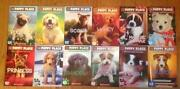 Puppy Place Books Lot