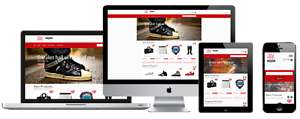 Affordable Web Design packages and Shopping cart eCommerce Darwin CBD Darwin City Preview