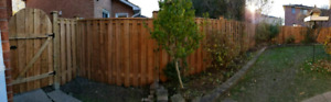 Fence. Repairs. Decks