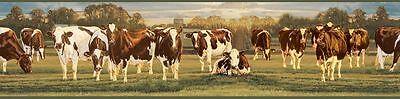 Ayrshire Brown & White Cows Easy Walls Wallpaper Border FFR65381B