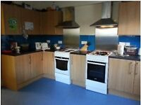 Double room for UoB student in Redland