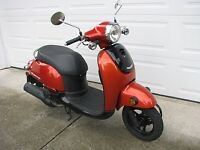 2014 Scooter Gas by HONDA Model Giorno Four Stroke Low Kms MINT