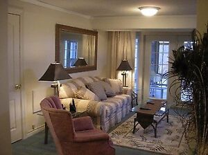 Furnished Luxury One Bedroom