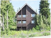 For sale 1/8 or 1/4 ownership in Mount Washington chalet