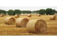 X2 Straw Bales