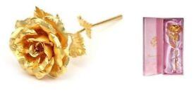 24kt plated rose