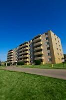 Bright & spacious one bedroom apartment for rent in great Brantf