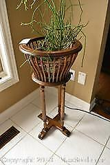 Plant And Stand. A