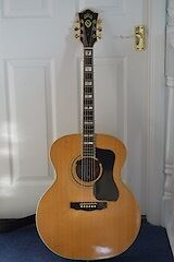 Vintage Acoustic Guild F50 BLD (1 owner 40 years) 6 String Jumbo Guitar
