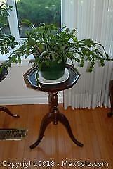 Wooden Occasional Table and Plant A