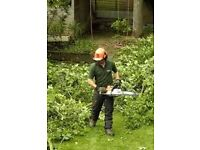 Tree Surgery Groundsman Required