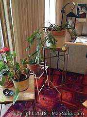 Tables, House Plants and More A