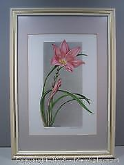 Pink Lilies Limited Edition Numbered Vintage Print Signed Katie Shears #1 - B