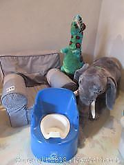 Stuffed Animals And Childs Chair B